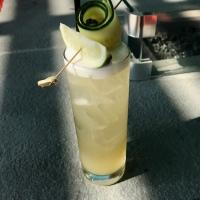 Cocktails, del 1: Opskrift på Cucumber Collins.